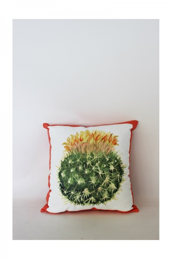 Digital Printed Pillow